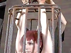 Babes sweet nipples acquires painful torturing