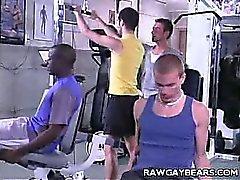 El músculo Bound Oso Enchúfate