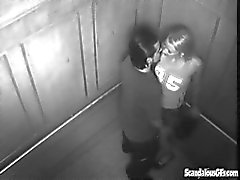 Wild sex In The Elevator Gets Caught On Cam
