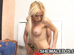 Horny shemale Shakira Maya and her partner are excited to