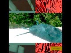 Lil ugly mane - oblivion access (album complet)