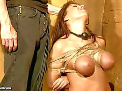 Busty brunette Alison Star gets tortured rough in bondage fantasy