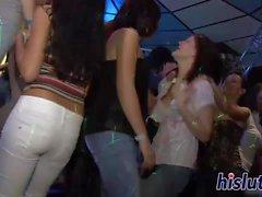 Raunchy honeys suck dicks in the club