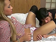 brasilianisches Transsexueller hottie
