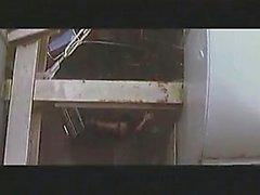 Agradáveis piscando boobie e sexo cenas de um japonês famoso