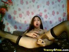 Sevimli bir Asya tranny şerit ve naked gets ile sonra onu oynadığı