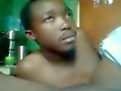 african numero cespuglio