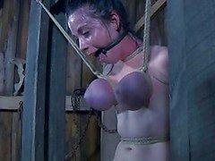 Menina quente sexy em ação escravidão