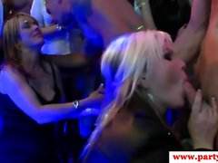 Euro Amateure Whipcream bei sexparty lecken
