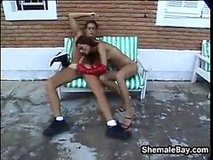 Shemale Having Sex Outdoors