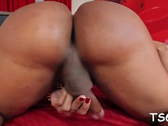 Hot ladyboy puta es una locura de whacking fuera y butt poking