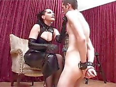 Dominatrix ass worship
