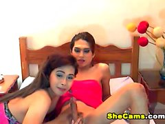 Two Shemale On Cam Sucking Cock