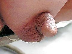Rasierte Penisse