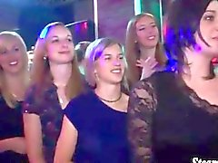 Teenie Party Girls das Saugen Abstreifer harten Schwanz